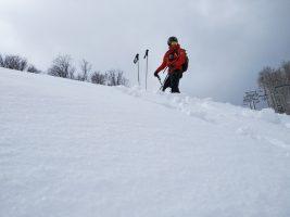 Zo služby v Snowlande