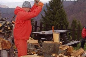 Vynášky a chystanie dreva, Borišov, 2007